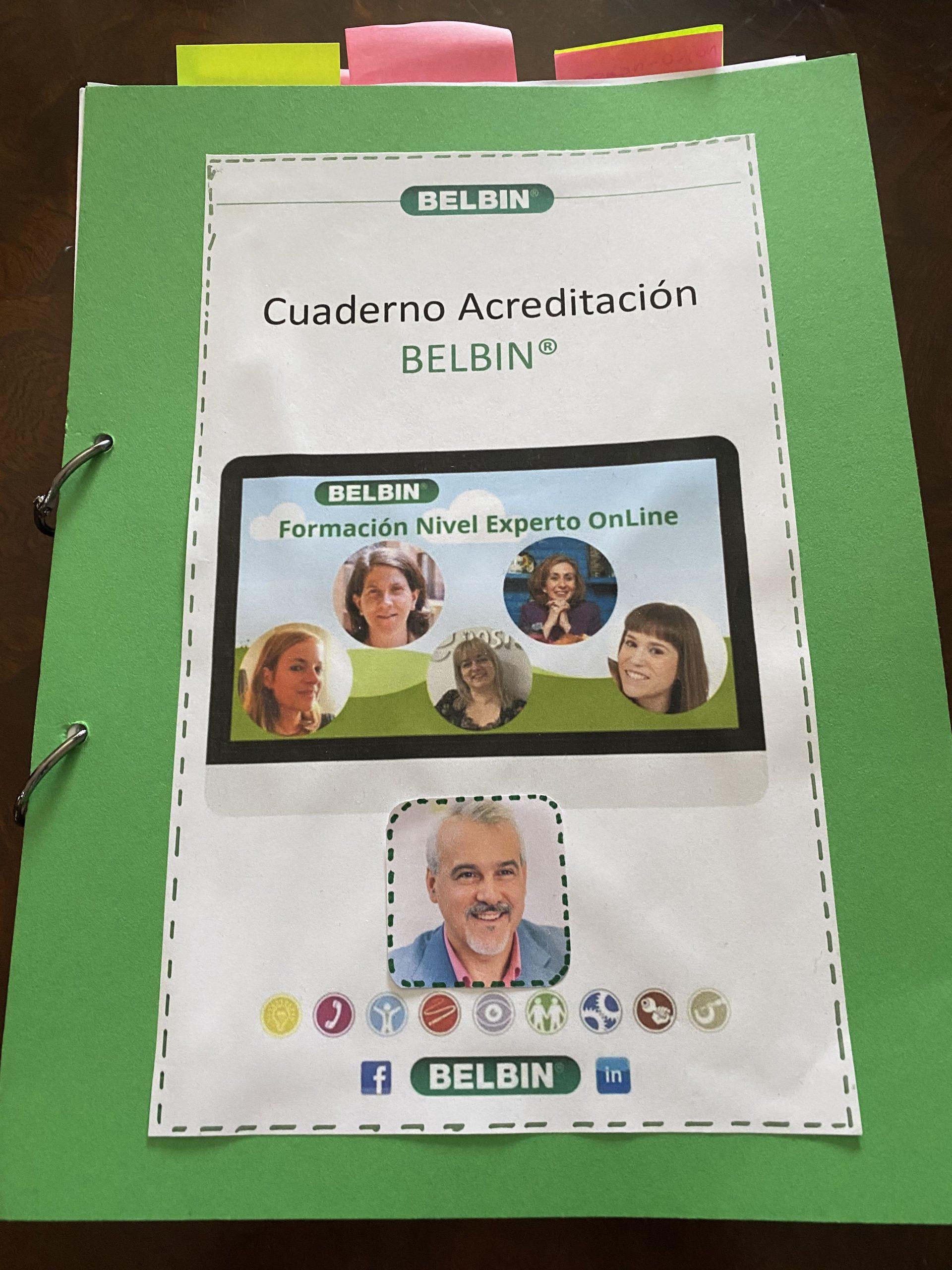 Metodología Belbin